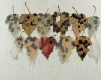 """Blighted Kay Polson Grubola 2010 Hawthorn leaves, silk chiffon, thread 22 ¾\"""" x 15 ¾\"""" www.grubola.com"""